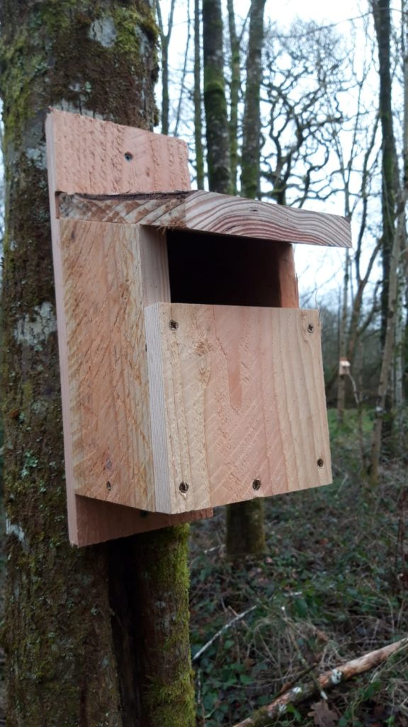 Open Front Bird Box